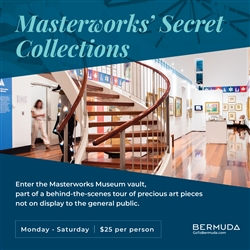 Masterworks' Secret Collections