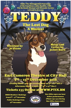 Teddy The Lost Dog A Musical