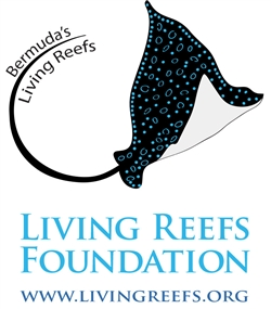 Living Reefs Foundation Donation Page