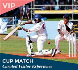 VIP Cup Match Curated Visitor Experience