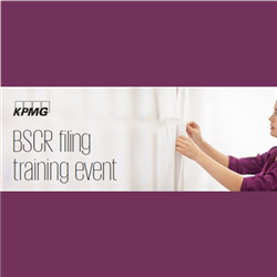 BSCR Filing Training