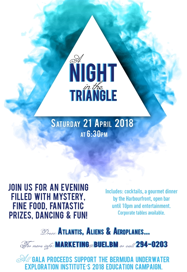 BUEI A Night in the Triangle Fundraising Gala