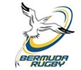 BRFU Senior Player Registration